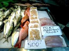 タヒチ伝道のブログ-korori 001